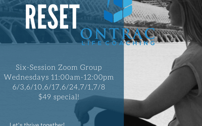 Vision Reset Coaching Course begins Wednesday, June 3rd!